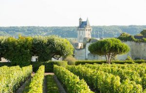 Private Loire valley tours www.loirevalleystay.com