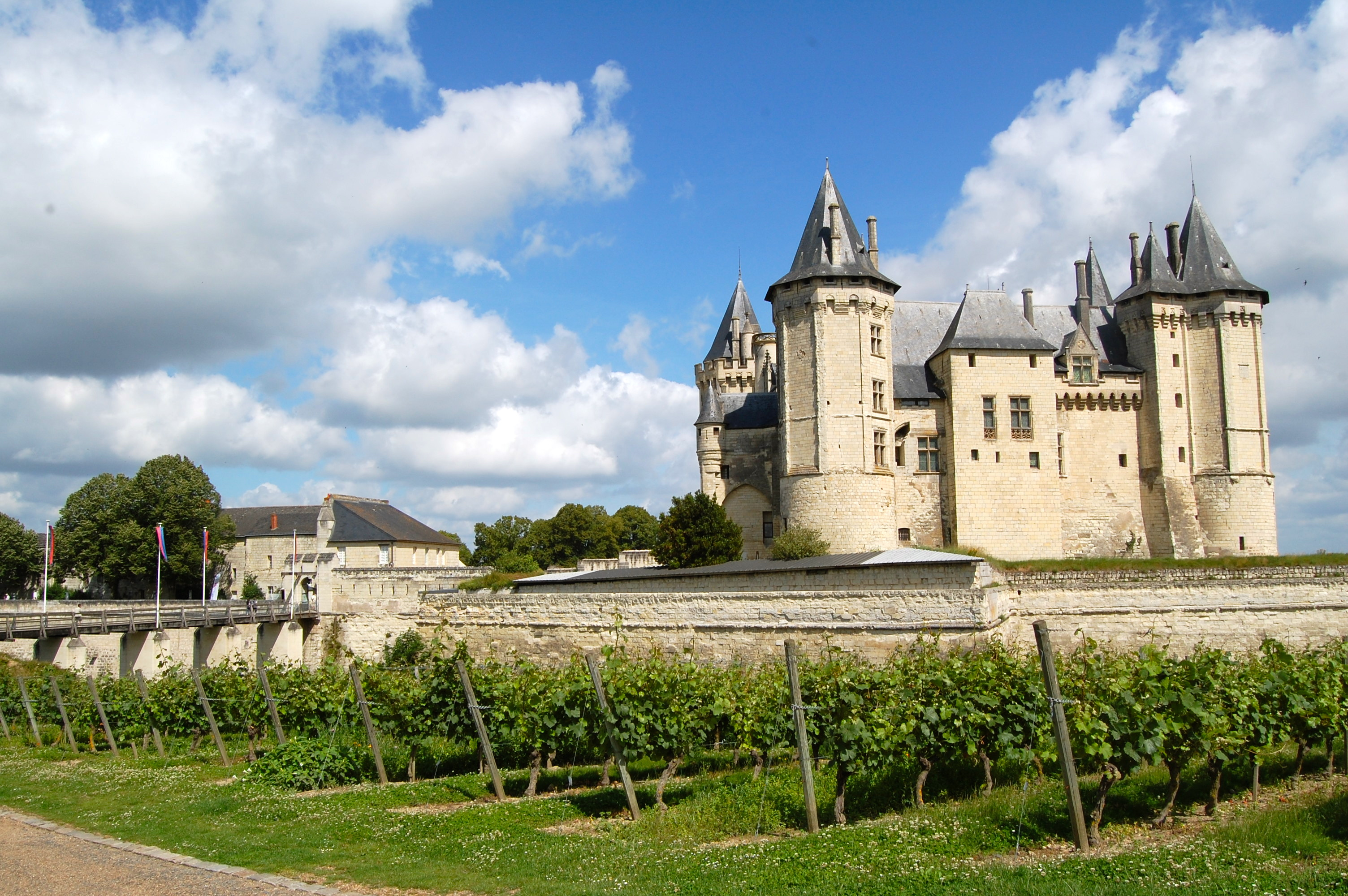 Visit Loire valley from Paris