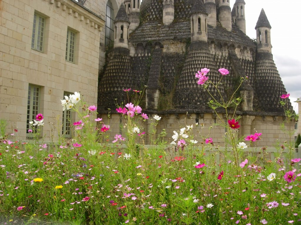 Fontevraud abbey tour